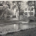 UC Botany Pond