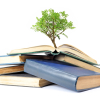 Books & tree